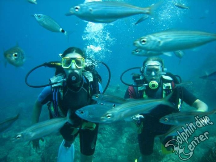 Scuba diving centers worldwide for Dive centres