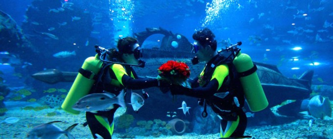 Get Married Underwater