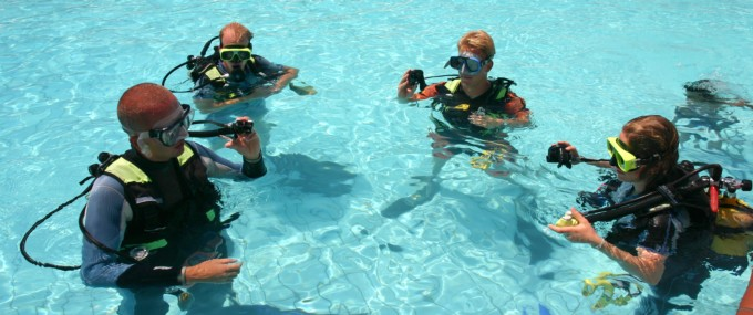 Easy Dive Booking: best diving eperience