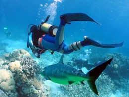 HOW TO CHOOSE THE BEST DIVING CENTRE ON YOUR DIVING HOLIDAY- TOP TEN TIPS